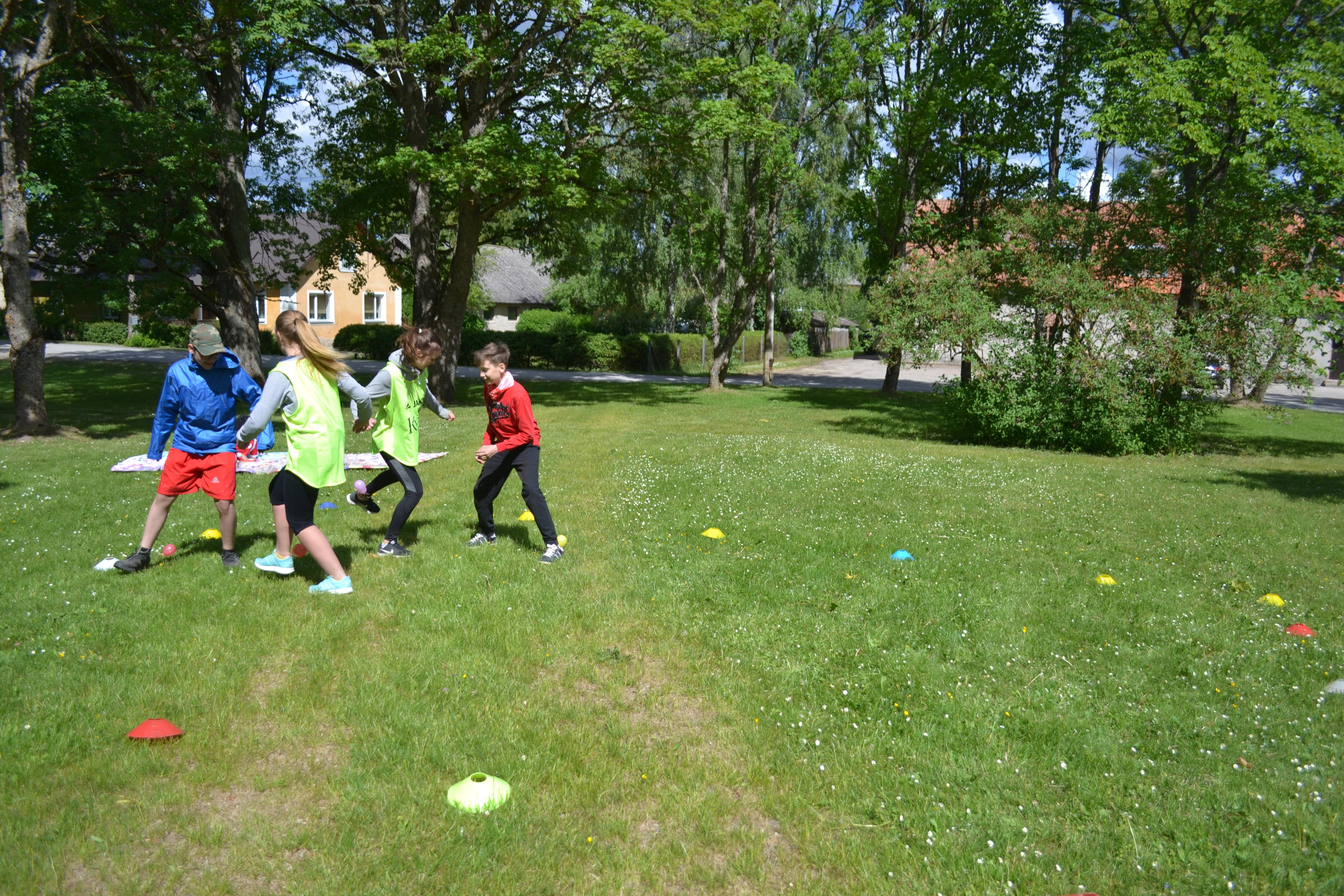 Jalgpalli piknik